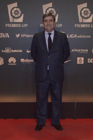Miguel Cardenal, Secretario de Estado para el Deporte, en la alfombra roja previa a la 'Gala de los Premios LFP 2014'